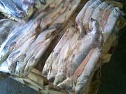сушёные морепродукты,  мука рыбная,  рыбные консервы,  а так же фрукты,  о